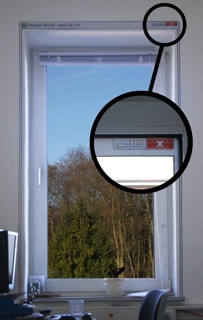 windows_01.jpg